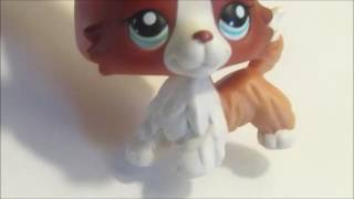 How Draw Lps