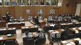 20181113衆議院法務委員会