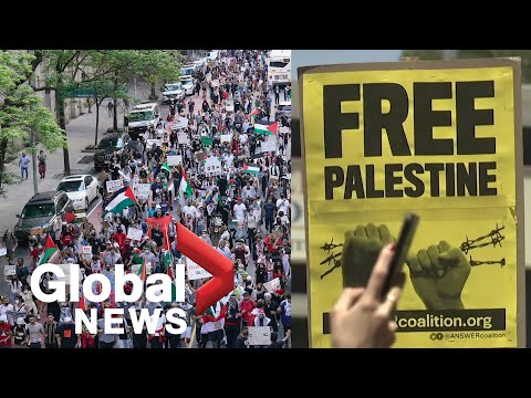 """""""This is a human rights issue"""": Thousands march in support of Palestine in cities around the world"""