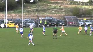 2011, Antrim v Waterford, Camogie National League Div 2, Final (Highlights)
