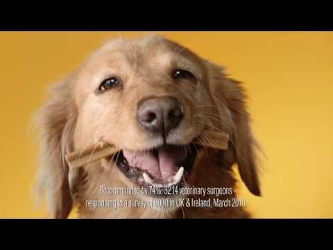 Pedigree Dentastix Official TV Ad (UK) 2013