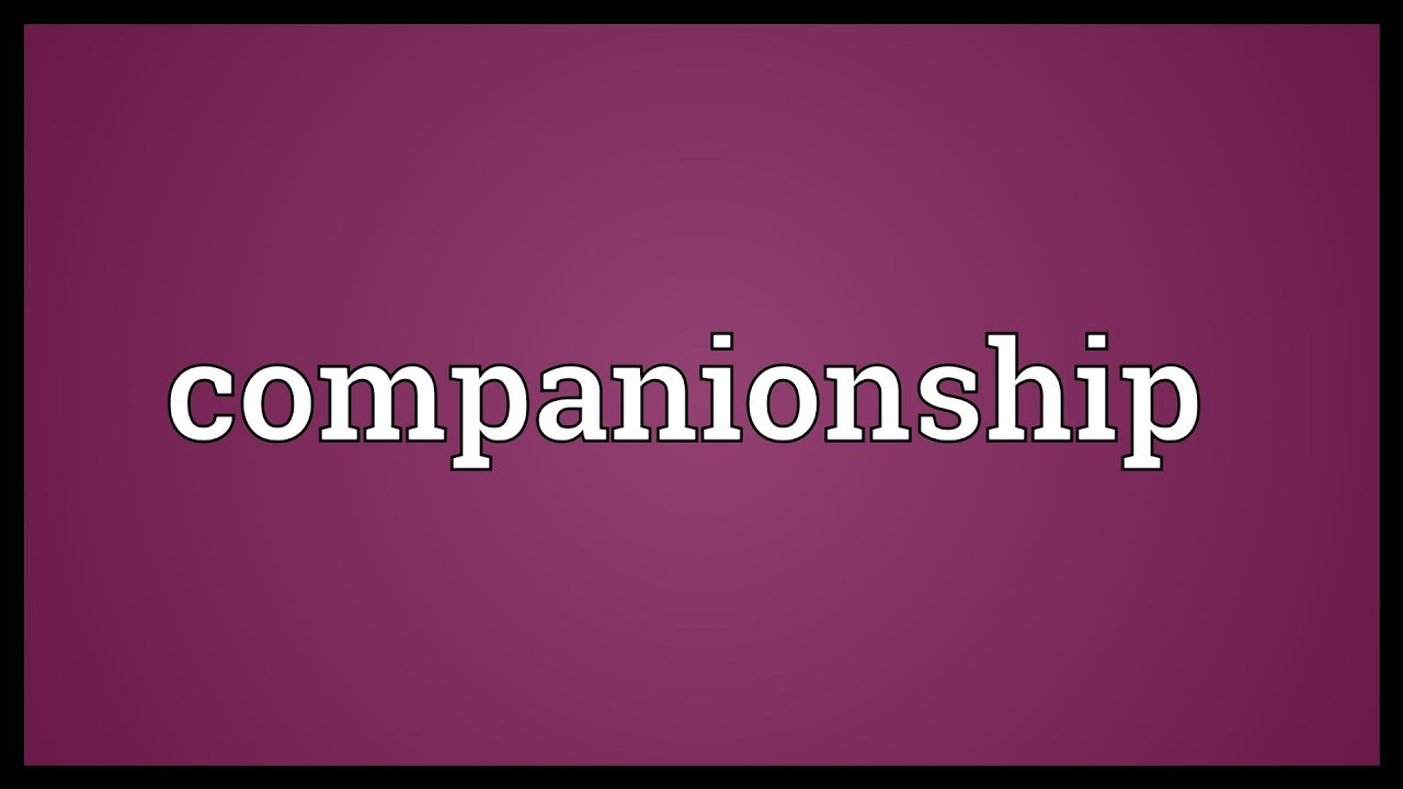 companionship meaning youtube