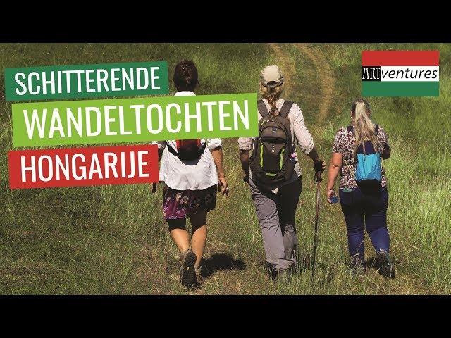 COMPLEET VERZORGDE WANDELREIZEN IN HONGARIJE | ARTVENTURES