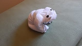 How To Fold a Frog Using Towels