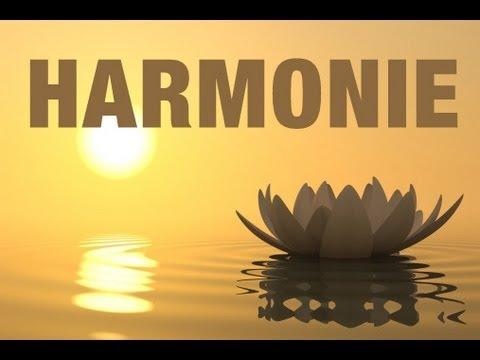 zen attitude s ance d 39 hypnose pour trouver l 39 harmonie. Black Bedroom Furniture Sets. Home Design Ideas