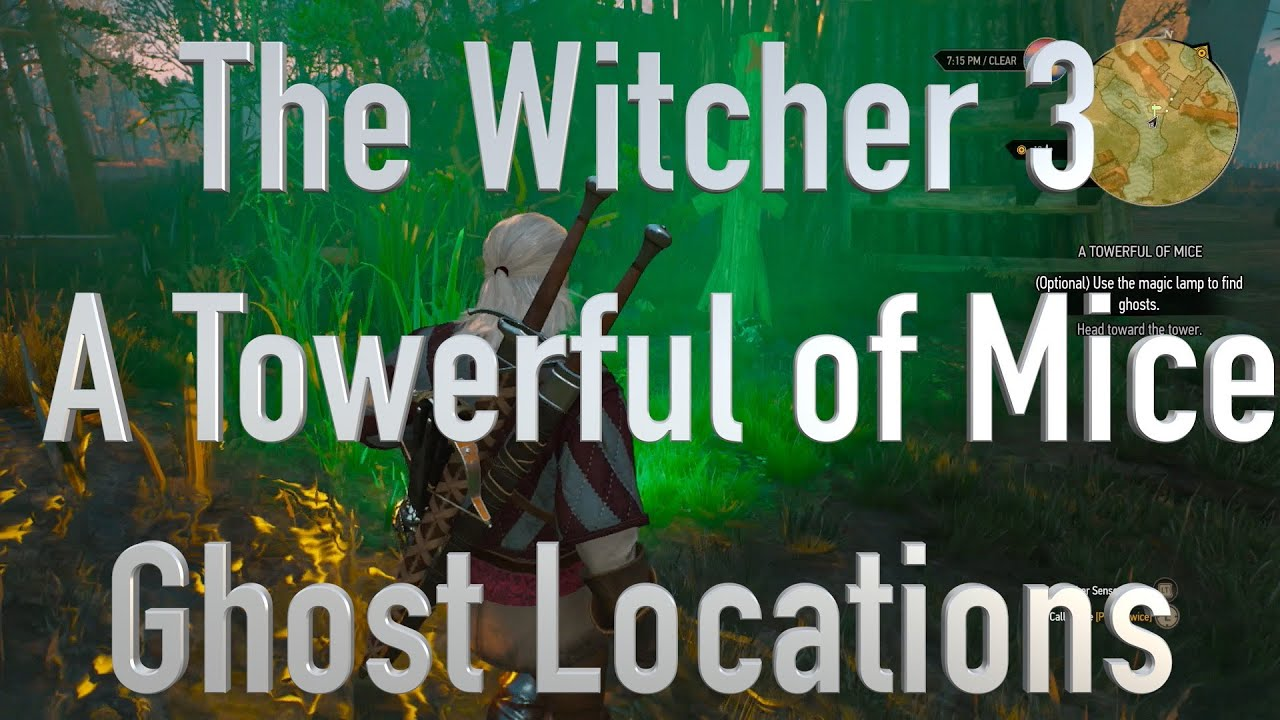 The Witcher 3 A Towerful of Mice Ghost Locations - YouTube