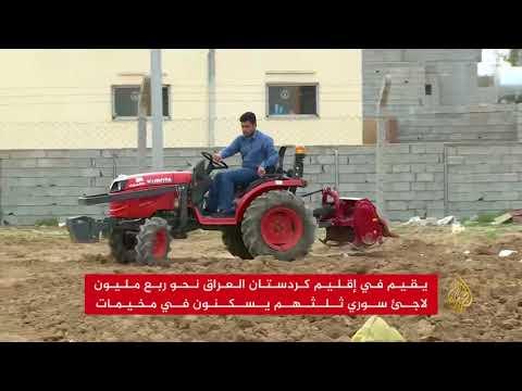الفاو تدعم ألف عائلة سورية بكردستان العراق  - نشر قبل 5 ساعة