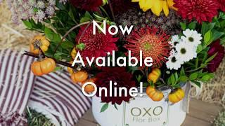 Flor Box OXO | Flower Box | Fall 2019 | OXO Collection Pumpkin Spice