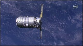 """Cygnus NG-11 """"SS Roger Chaffee"""" Rendezvous, Grapple, & Berthing (time lapse)"""
