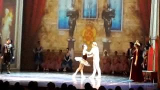мировое шоу лебединое озеро китайский акробатический балет шанхая в тюмени