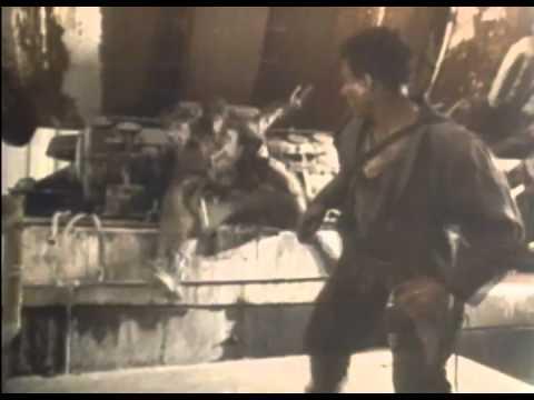 Cyborg 1989 Movie