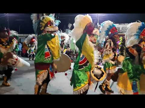 LOS PUELCHES 1° PREMIO 2018