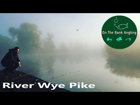 Fishing for River Wye Pike