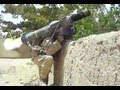 JAVELIN MISSILE FIRED AT TALIBAN IN AFGHANISTAN FIREFIGHT