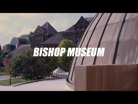 BISHOP MUSEUM SEQUENCE #016
