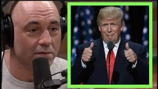 Trump is a Salesman | Joe Rogan & Tim Dillon