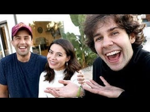 David Dobrik's Vlog if Josh Peck was the main character.