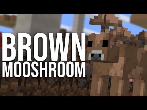 How To Get Brown Mooshrooms In Minecraft!