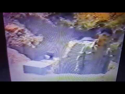 Qarabağ Döyüşləri 1994-cü Il ( Səfərovlar 3 Qardaş     Cəbrayıllı )