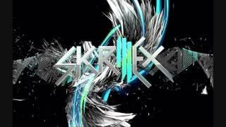 Skrillex Bangarang full album without brakes [HQ] (3D Pictures!)