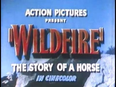 Wildfire, the Story of a Horse (1945) - Full Western Movie with Bob Steele