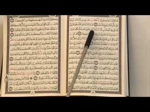 1️⃣8️⃣6️⃣ المصحف المعلم الربع 3️⃣ من سورة آل عمران