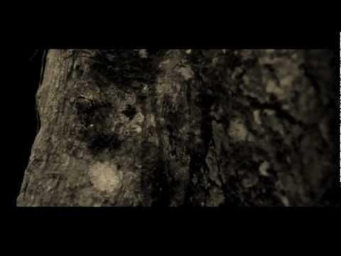 Dahlia's Tear :: Dreamescape (Liquid Chamber) (Cold Meat Industry-2012) mp3