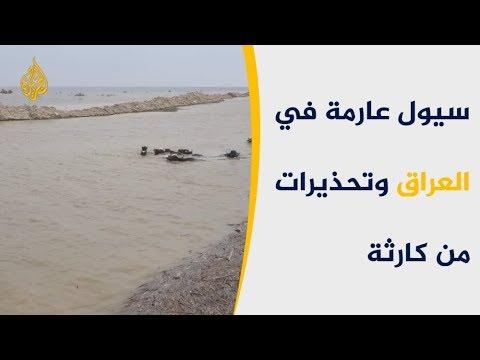 ???? سيول البصرة العراقية تغرق أراضي زراعية شاسعة  - نشر قبل 3 ساعة