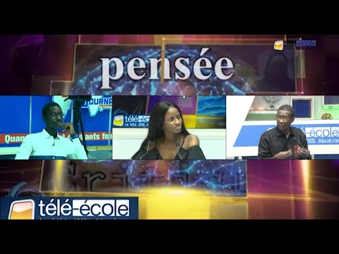TELE ECOLE : Pensée critique avec Professeur Mary Teuw NIANE Thème : Qu'est-ce qu'un intellectuel?