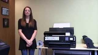 Epson SureColor P800 Printer Overview