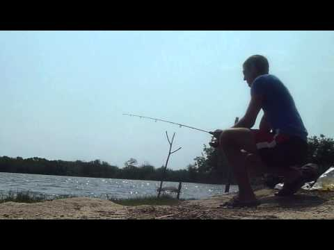 хорошая подсечка и рыба в садке - YouTube
