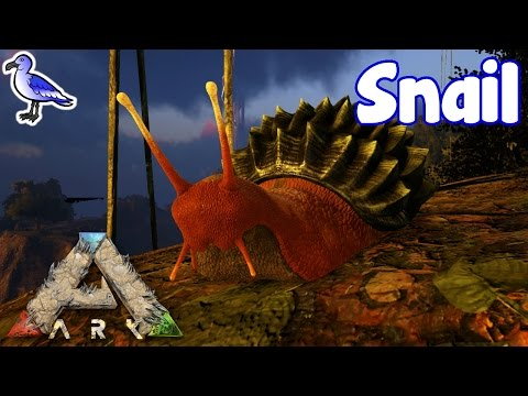 HOW TO TAME A SNAIL IN ARK