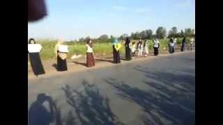(( باطل ... ميحكمش )) سلسلة بشرية لأحرار قري زفتي رفضا للإنقلاب 9/5/2014
