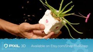 Companion Cube Planter