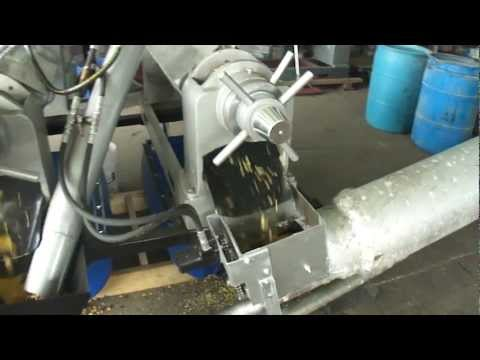 Soybean oil press for meal and oil