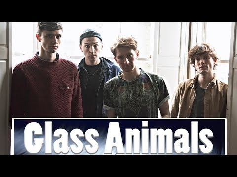 Glass Animals Interview
