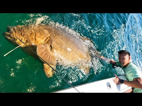 Father And Son Catch The Biggest Fish of Their Lives