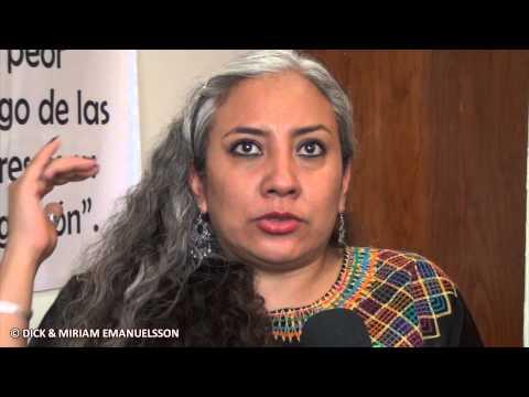 México: 200 mujeres defensoras de las mujeres fueron agredidas 2014 en Oaxaca