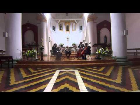 Quinteto Metropolitano de Metales (Chile) - Quinteto de cuerdas (Royal Danish Orchestra) Parte 2