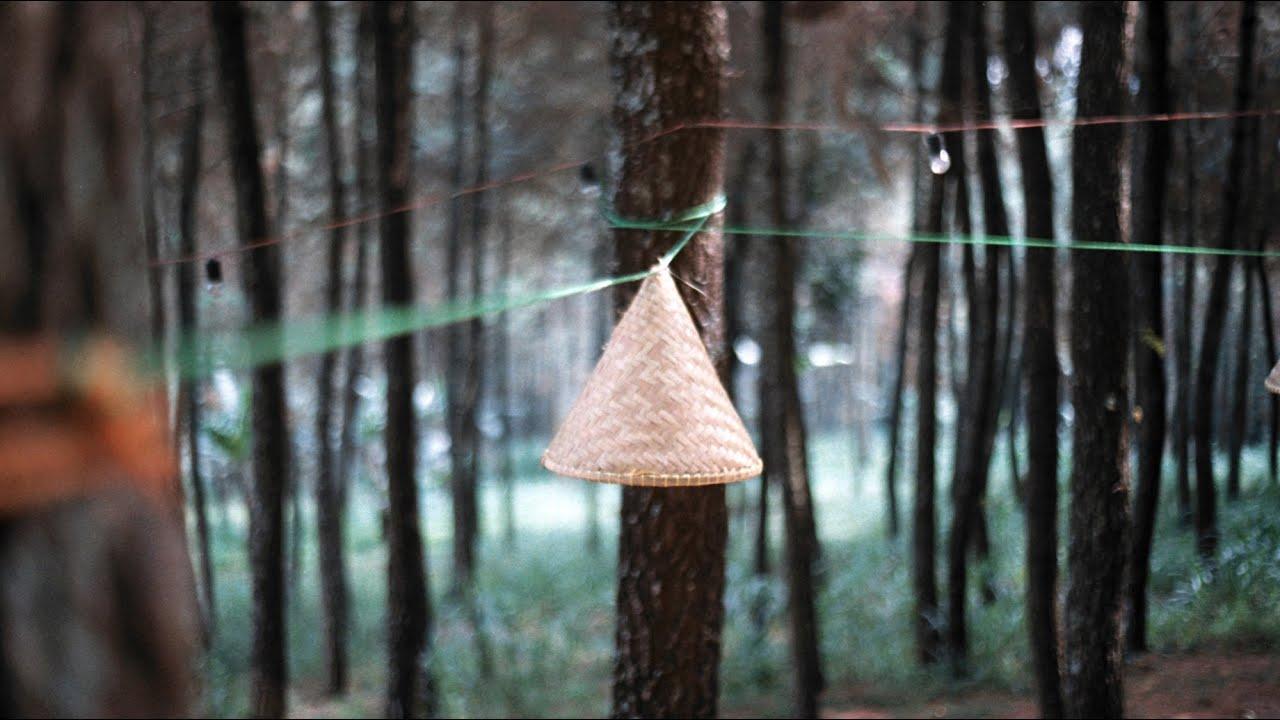 Bersantai di Hutan Pinus