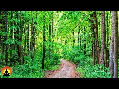 Healing Music, Relaxation Music, Chakra, Relaxing Music for Stress Relief, ☯2449