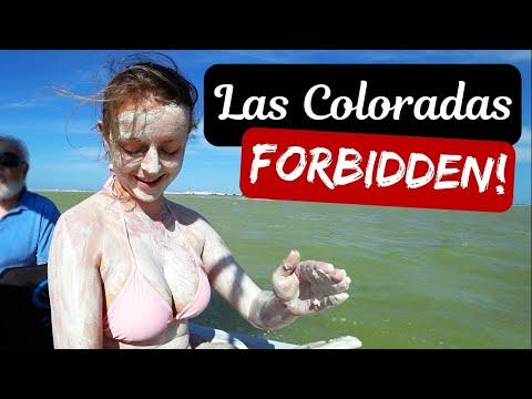 The Forbidden Pink Lakes of YUCATAN, MEXICO