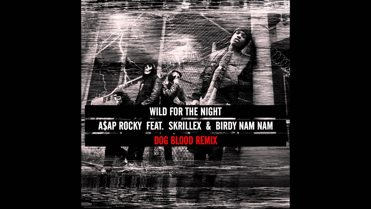 A$AP ROCKY - WILD FOR THE NIGHT (DOG BLOOD REMIX)