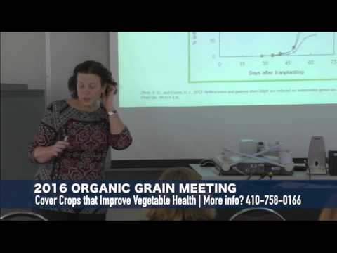 Organic Production Meeting 2016 - Cover Crops that Improve Vegetable Health
