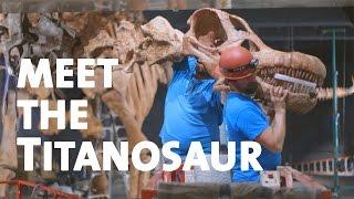 بالفيديو.. اكتشاف أكبر ديناصور في العالم وزنه 70 طنا