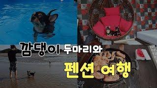 [여행VLOG] 댕댕이들과 애견펜션 + 바베큐,대하,숯…