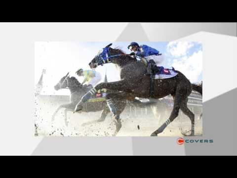 Can Always Dreaming win the Preakness and horse racing's Triple Crown?: Live From Las Vegas