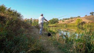 РЫБАЛКА БЛИЗ АЛМАТЫ полный обзор озера фазенда у Иваныча бешенная рыба