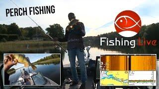 Fishing Live - First show! - Perch Fishing with Johan Ruhe