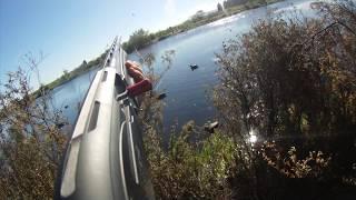 2017 Duck Hunting Highlights